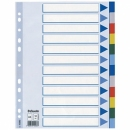 Przekładki plastikowe ESSELTE A4 12 kart kolorowe 15262