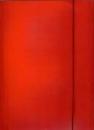 Teczka tekturowa DATURA A4 lakierowana z gumką 21232 czerwona