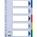 Przekładki plastikowe ESSELTE A4 5 kart kolorowe 15259